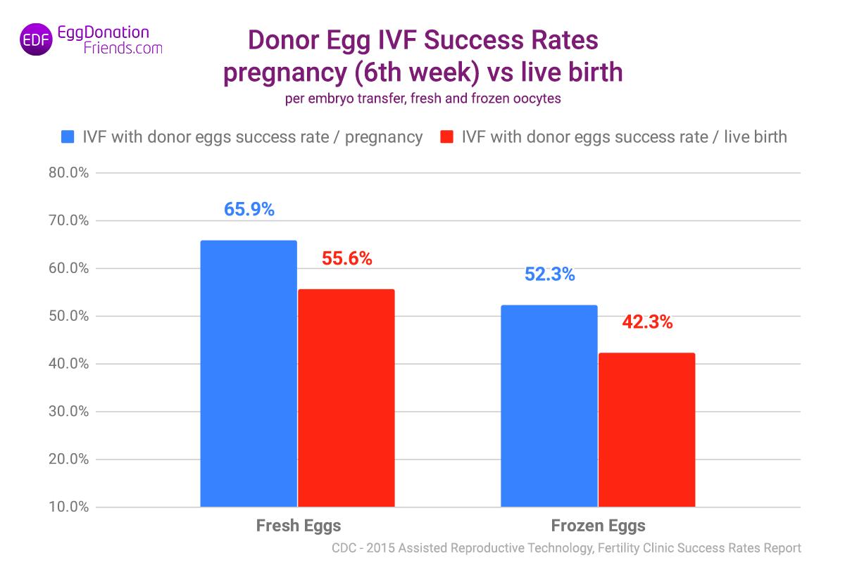 Erfolgsraten bei IVF mit Spendereizellen