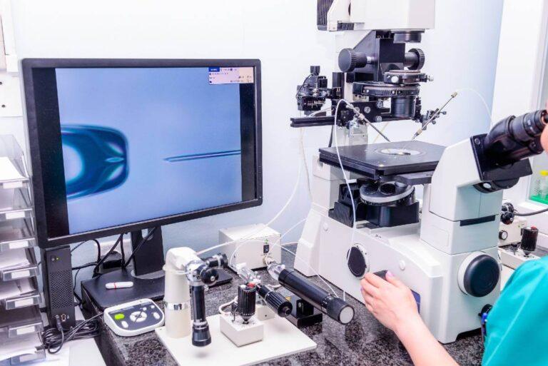 IVF Embryoentwicklung – Einblicke in das Embryologie Labor